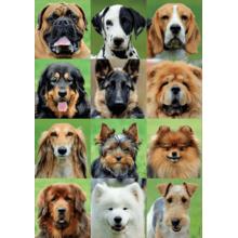 Пазл Educa, 500 элементов - Коллаж собаки