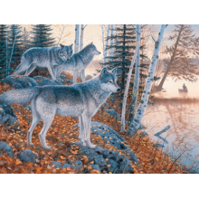 Пазл Cobble Hill, 1000 элементов - Волки на опушке, Jack Pine