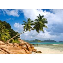 Пазл Castorland, 1000 элементов - Тайный пляж, Сейшелы