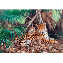 Пазл Castorland, 3000 элементов - Ягуар в джунглях