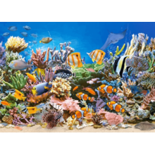 Пазл Castorland, 260 элементов - Цветы океана