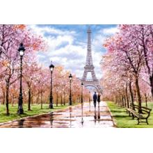 Пазл Castorland, 1000 элементов - Романтическая прогулка по Парижу