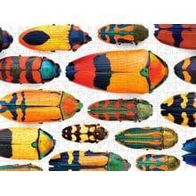 Пазл Pomegranate, 300 элементов - Марли: Красивые жуки