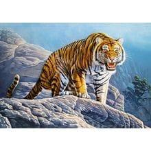 Пазл Castorland, 500 элементов - Тигр на скалах