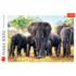 Пазл Trefl, 1000 элементов - Африканские слоны