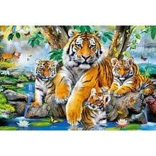 Пазл Castorland, 1000 элементов - Семья тигров у ручья