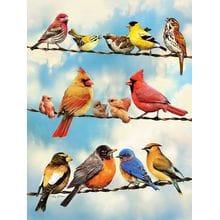 Пазл Cobble Hill, 500 элементов - Птицы на проводах
