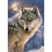 Пазл Castorland, 500 элементов - Волк
